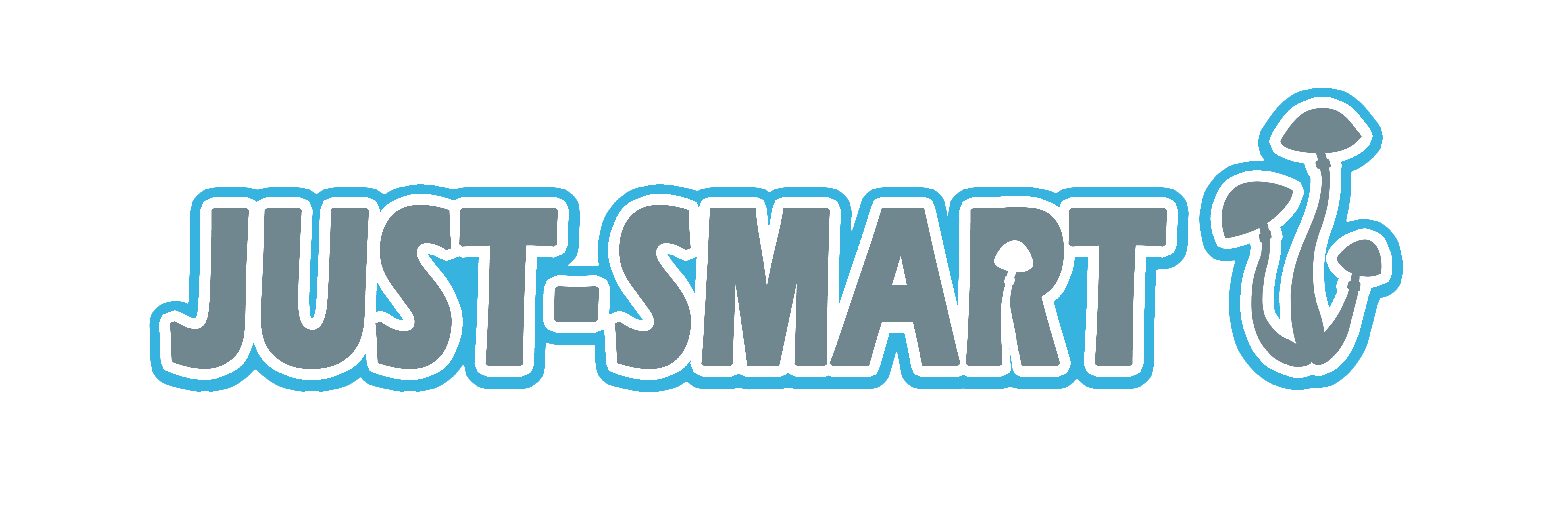 Just-Smart.nl Venray