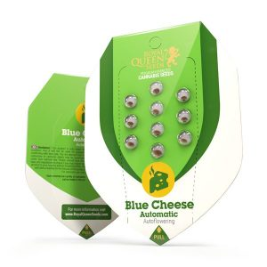 Blue Cheese automatic wietzaden