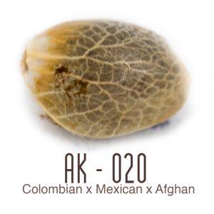 Ak-020 wietzaad